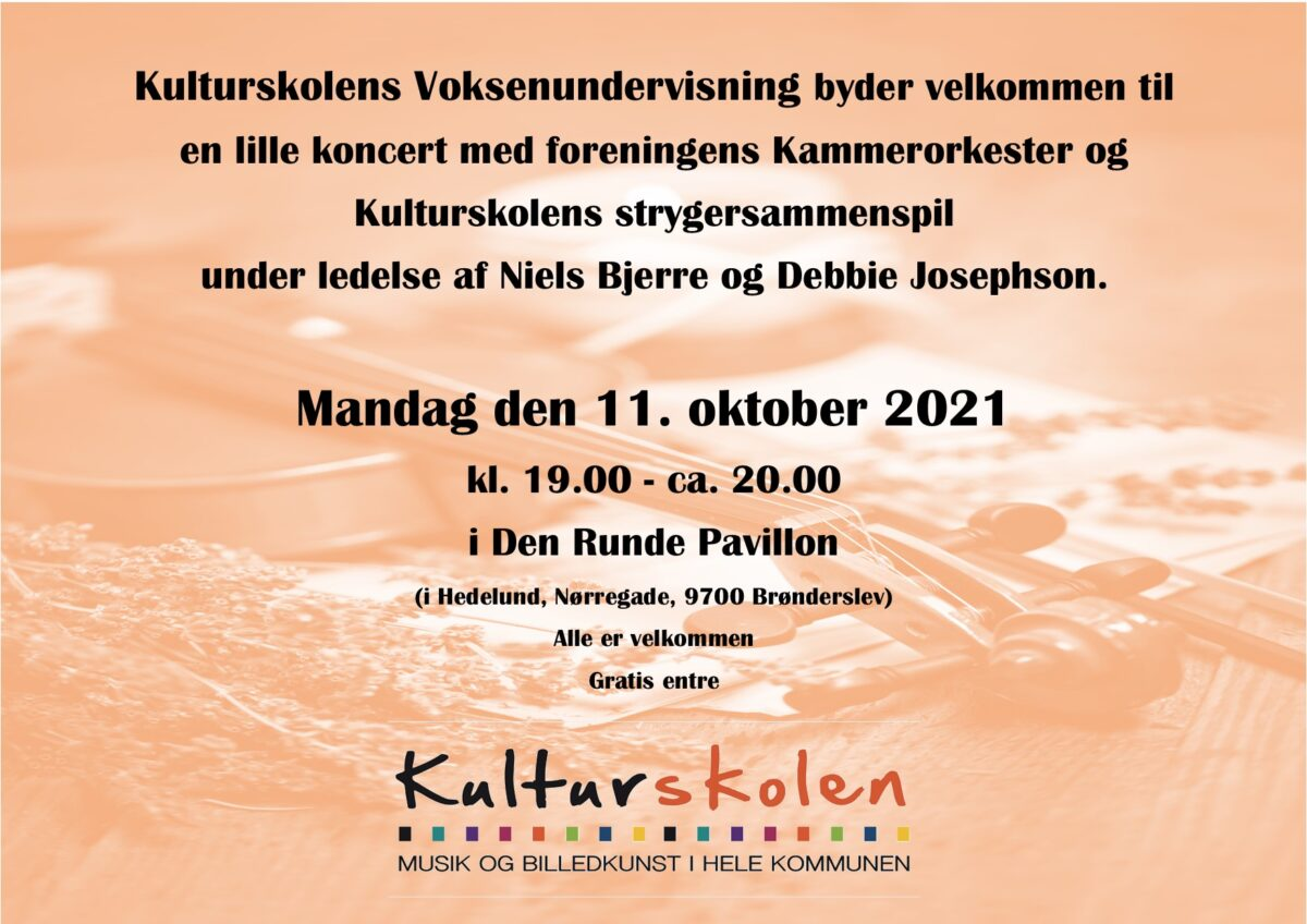 Koncert med Kammerorkester m.fl.